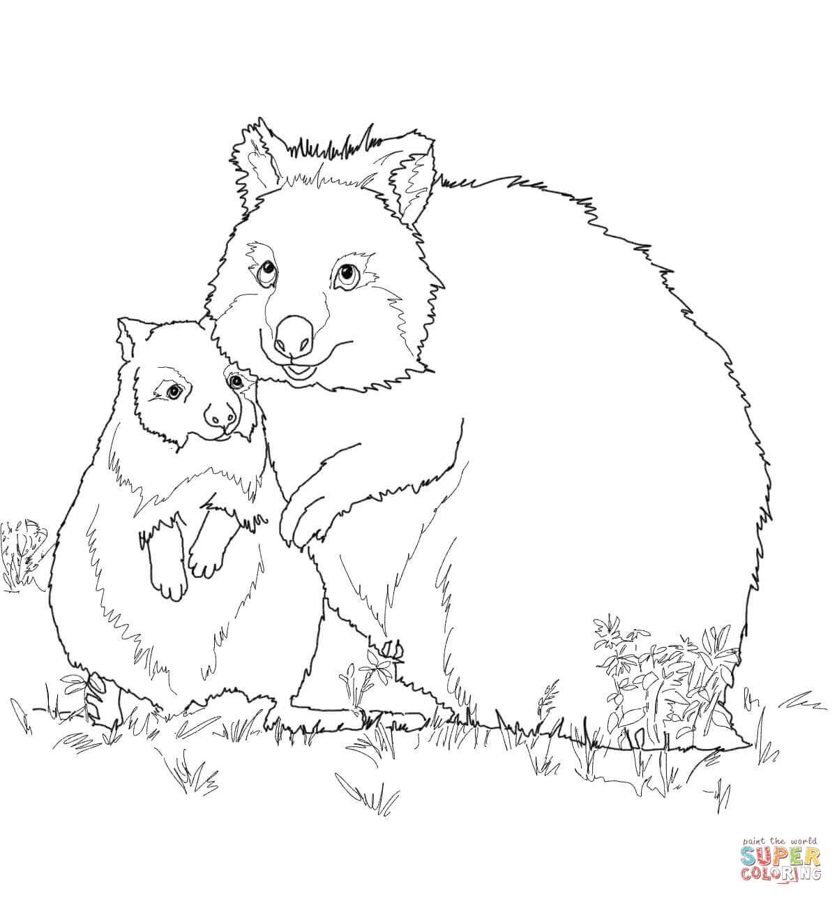 Quokka coloring #13, Download drawings
