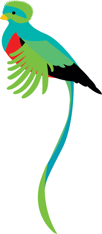 Quetzal  clipart #14, Download drawings