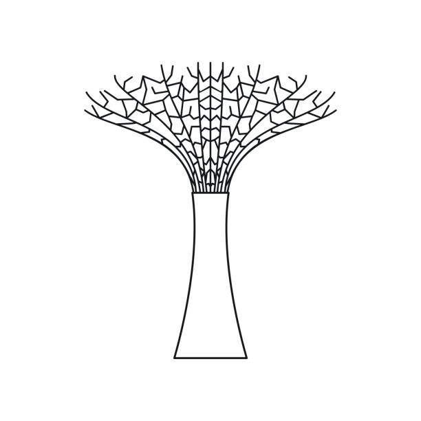 Quiver Tree clipart #12, Download drawings