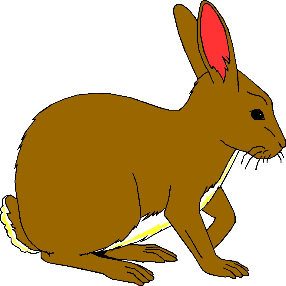 Rabbit clipart #16, Download drawings