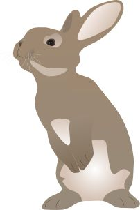 Rabbit svg #6, Download drawings