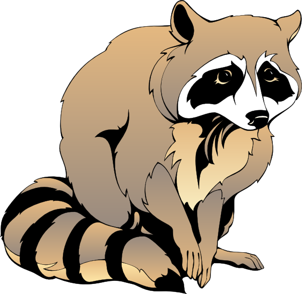 Racoon clipart #4, Download drawings