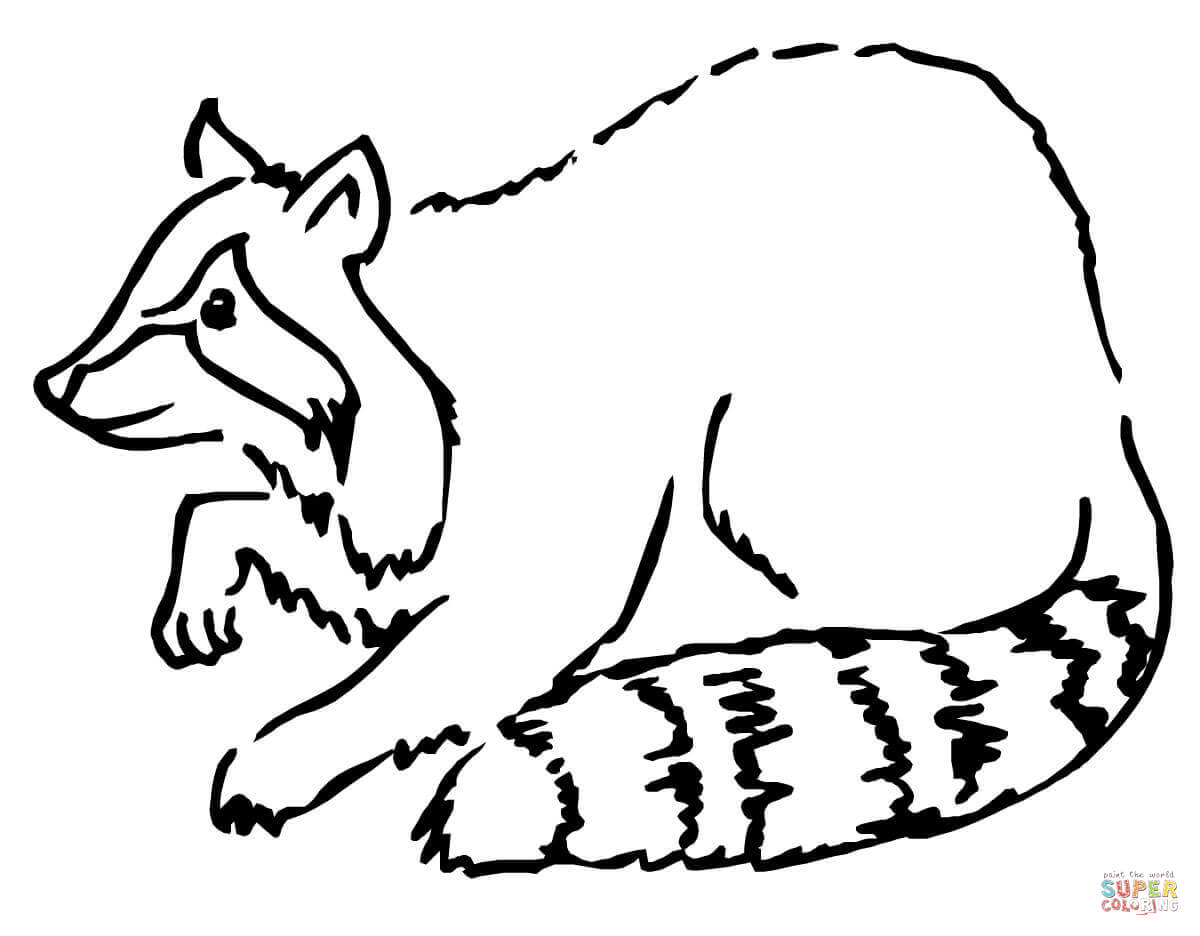 Raccoon Dog coloring Download Raccoon Dog coloring