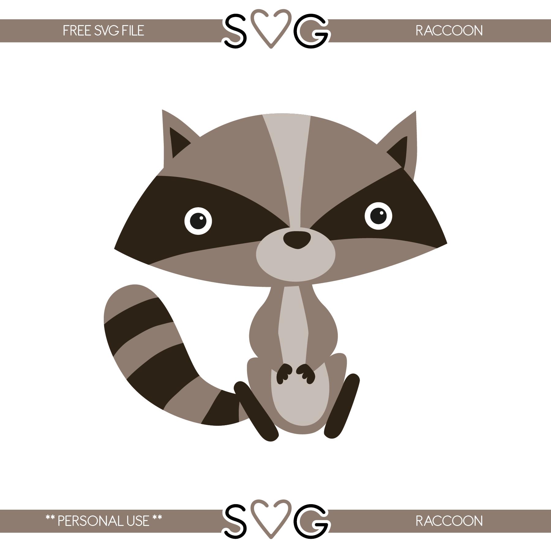Raccoon svg #20, Download drawings