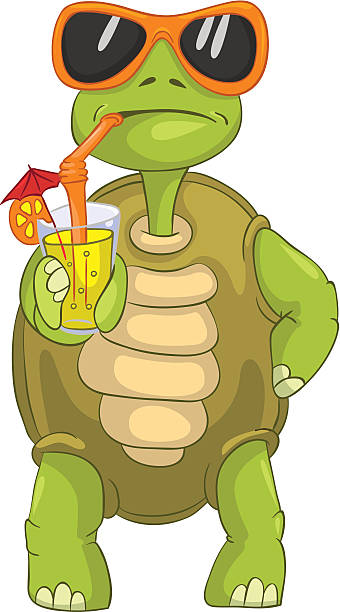 Radiated Tortoise clipart #8, Download drawings