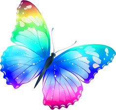 Rainbow Butterfly clipart #11, Download drawings