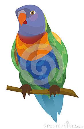 Rainbow Lorikeet clipart #4, Download drawings