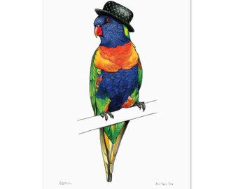 Rainbow Lorikeet clipart #6, Download drawings