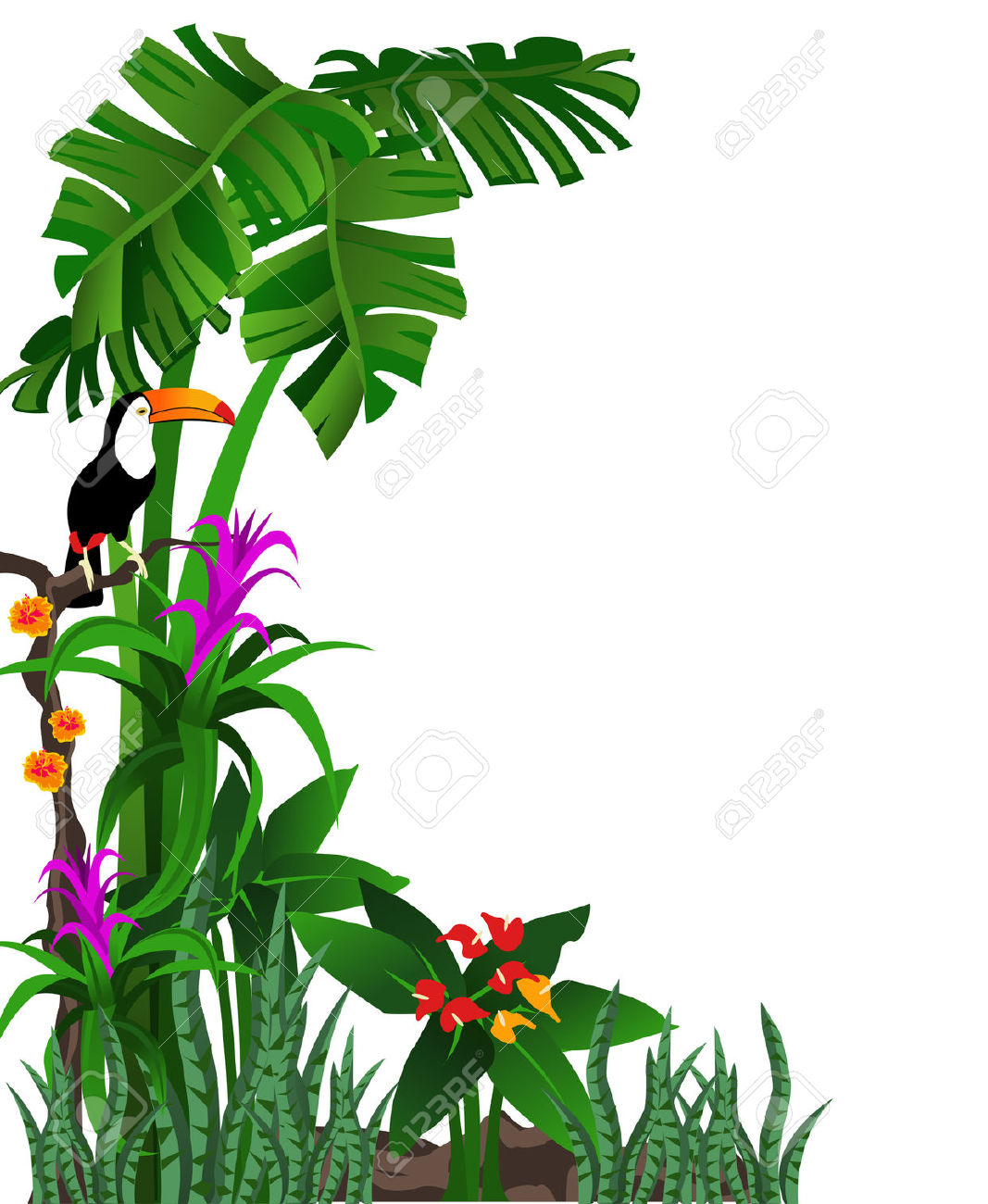 Rainforest clipart #10, Download drawings