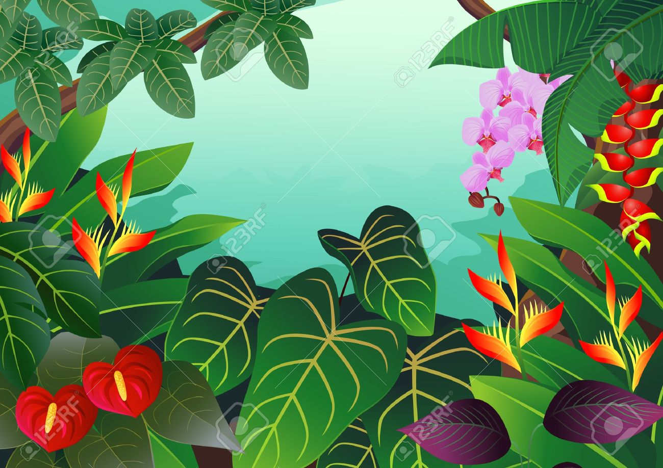Rainforest clipart #16, Download drawings