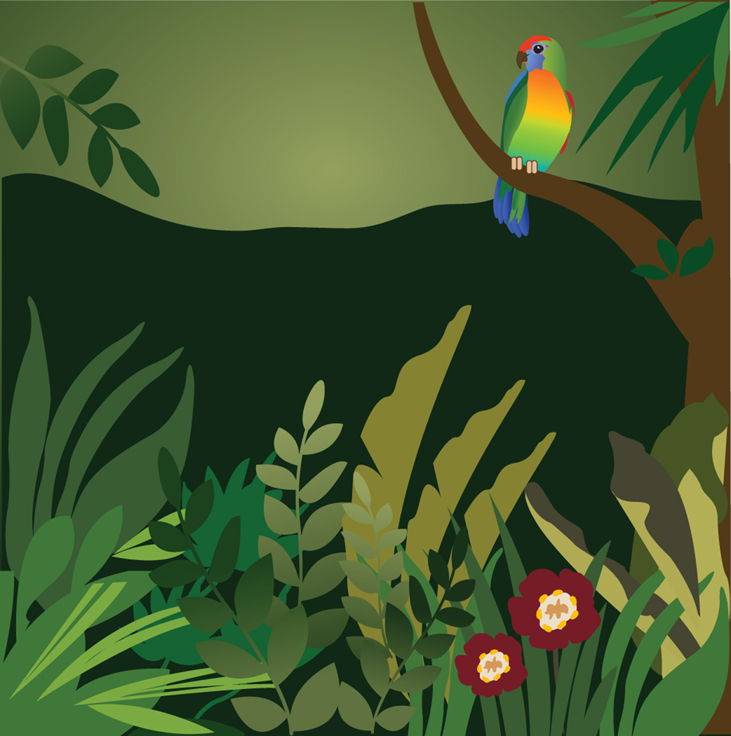 Rainforest clipart #19, Download drawings