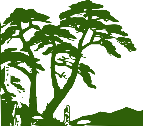 Rainforest clipart #11, Download drawings