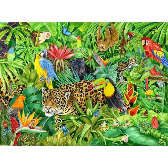 Rainforest clipart #3, Download drawings