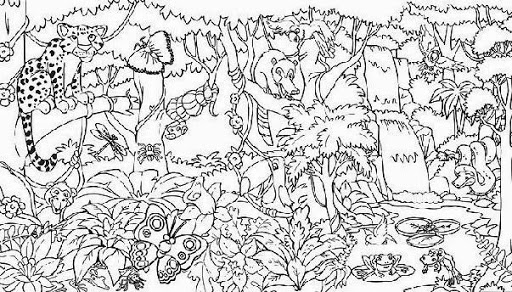 rainforest coloring, download rainforest coloring for free