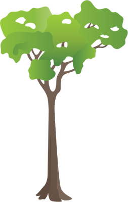 Rainforest svg #18, Download drawings