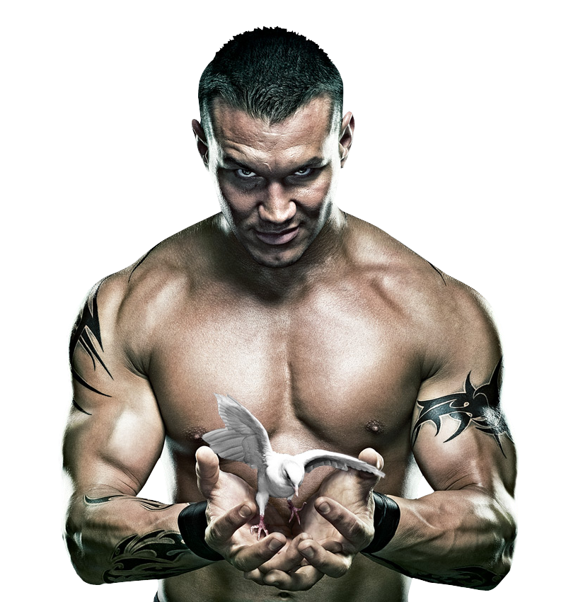 Randy Orton clipart #4, Download drawings