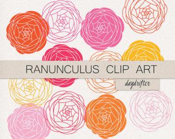 Ranuncula clipart #19, Download drawings
