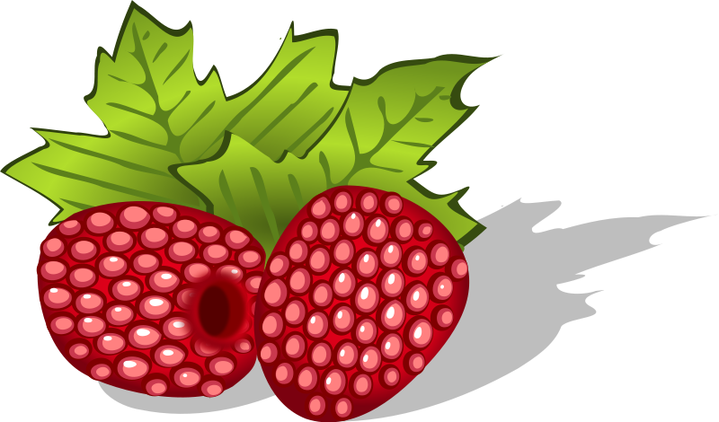 Raspberry clipart #14, Download drawings