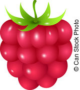Raspberry clipart #18, Download drawings