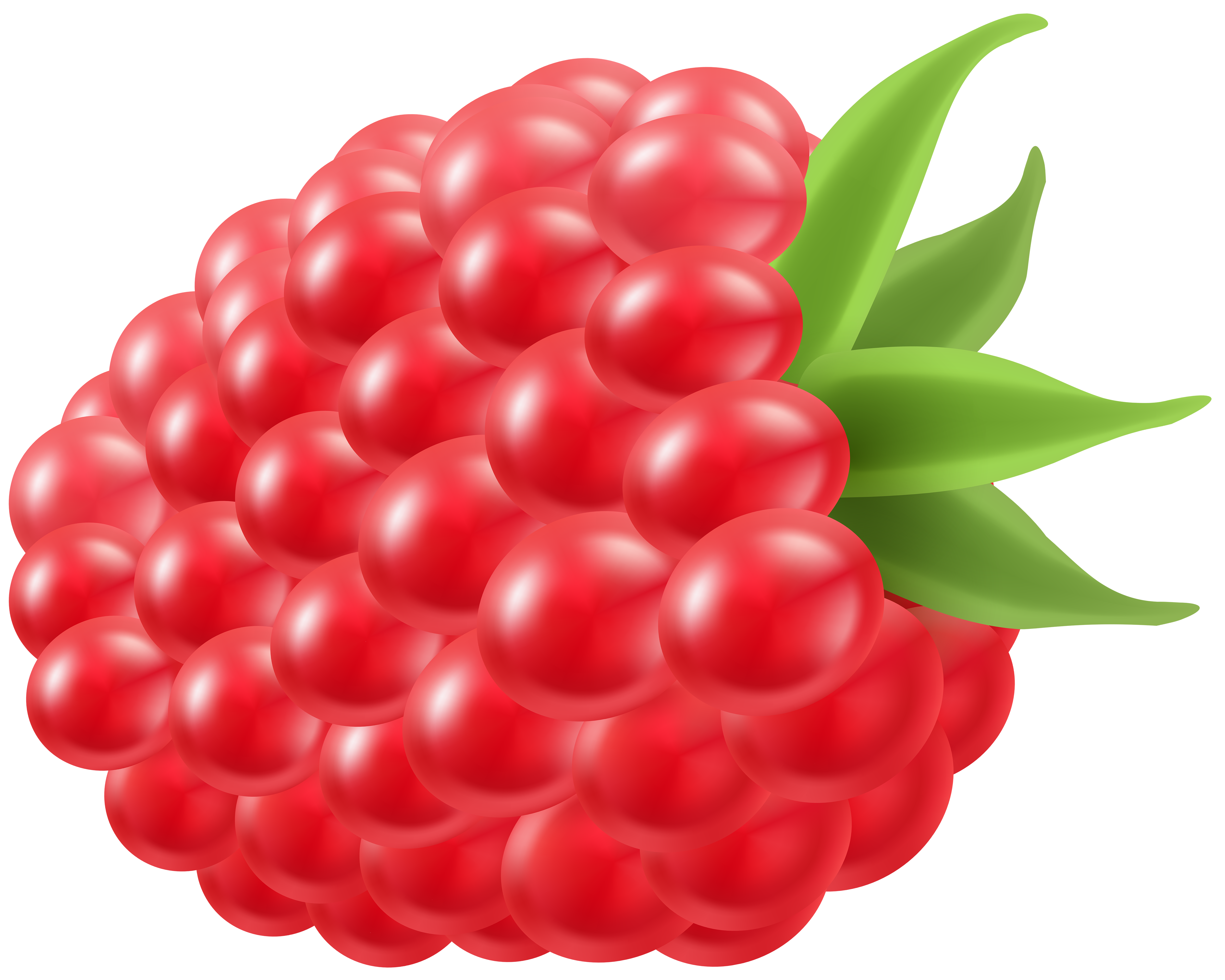 Raspberry clipart #4, Download drawings