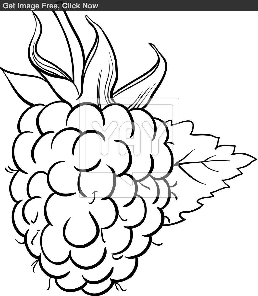 Raspberry coloring #1, Download drawings