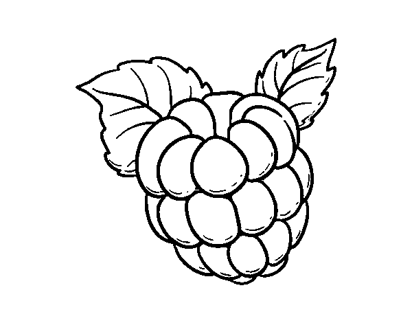 Raspberry coloring #9, Download drawings