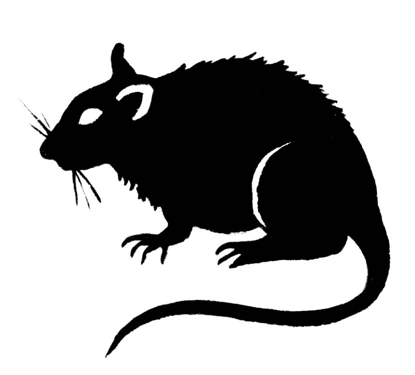 Rodent clipart #5, Download drawings