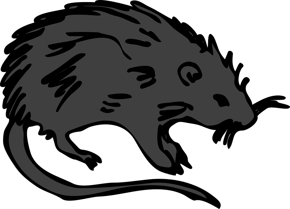 New World Porcupine svg #1, Download drawings