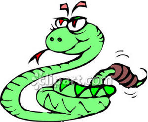 Rattlesnake clipart #6, Download drawings