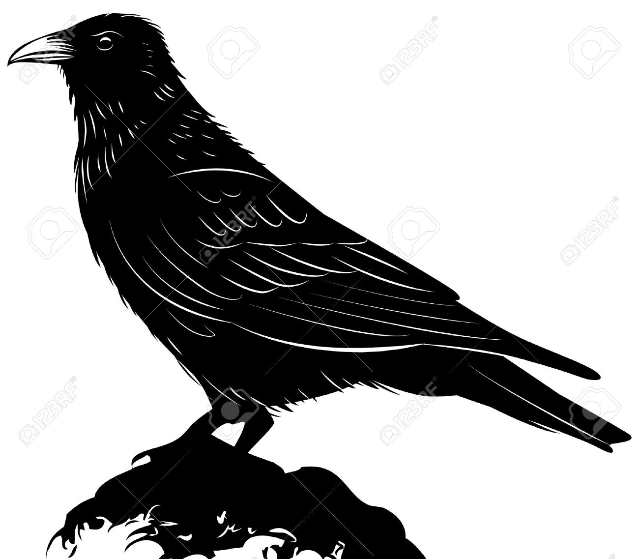Raven clipart #11, Download drawings