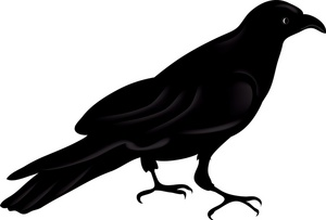 Raven clipart #18, Download drawings
