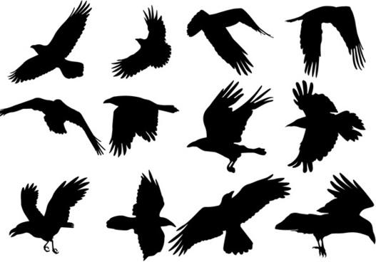 Raven svg #9, Download drawings