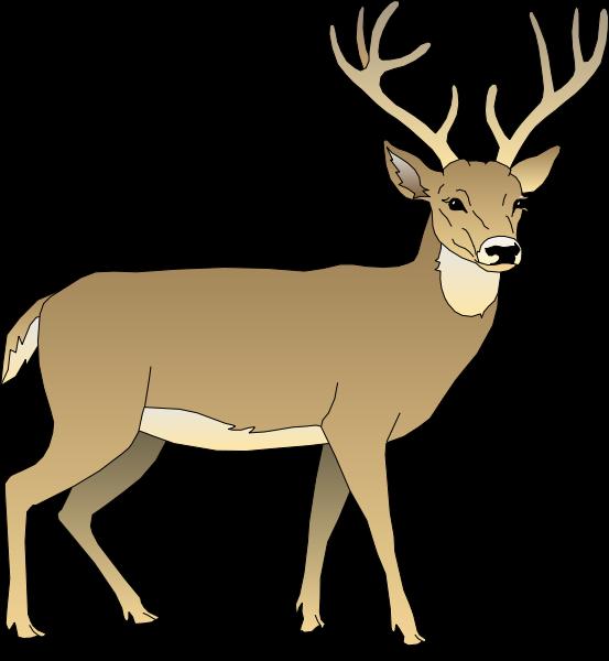 Red Deer clipart #8, Download drawings