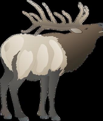 Red Deer svg #18, Download drawings