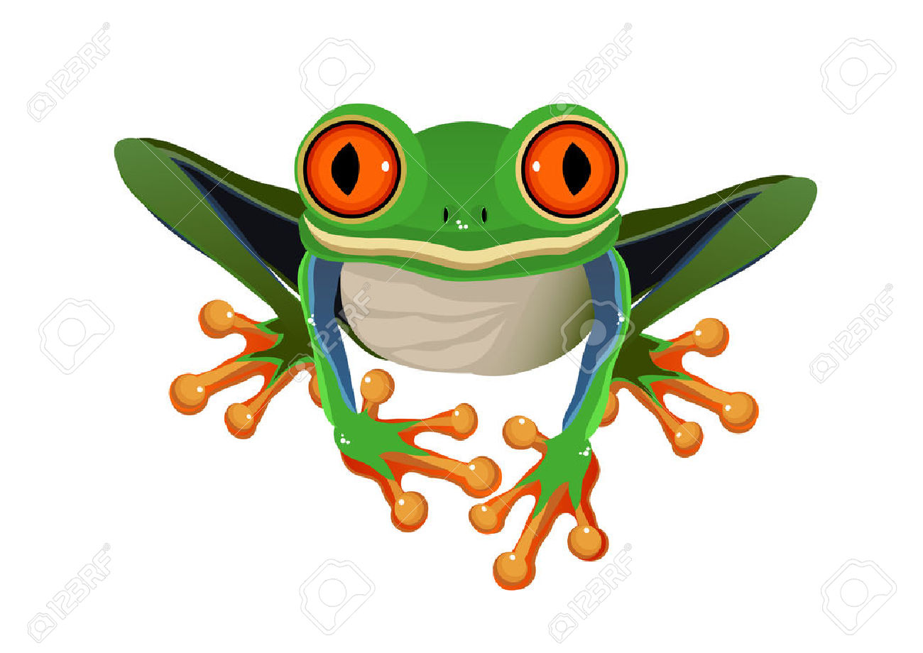 Red Eyed Tree Frog clipart #14, Download drawings