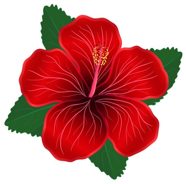Red Flower clipart #14, Download drawings