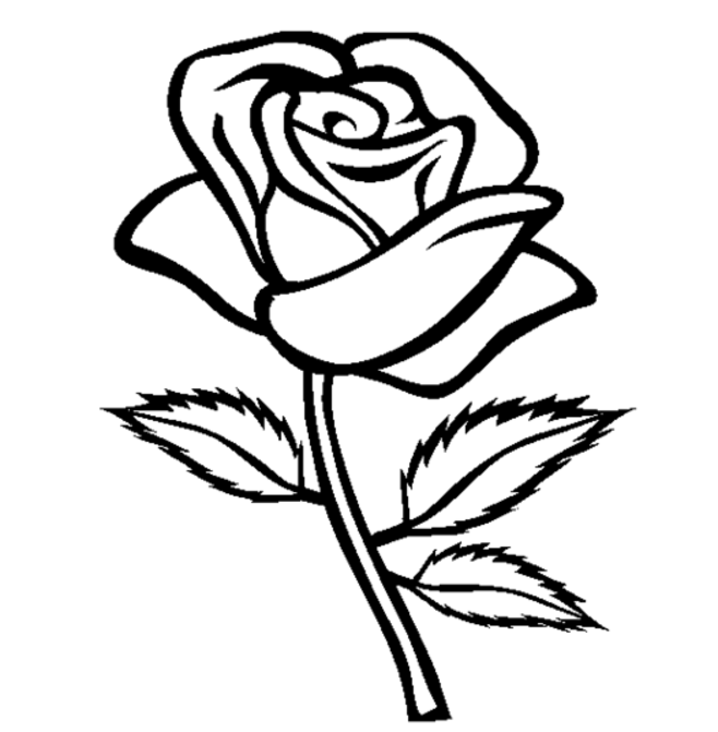Red Rose coloring #4, Download drawings