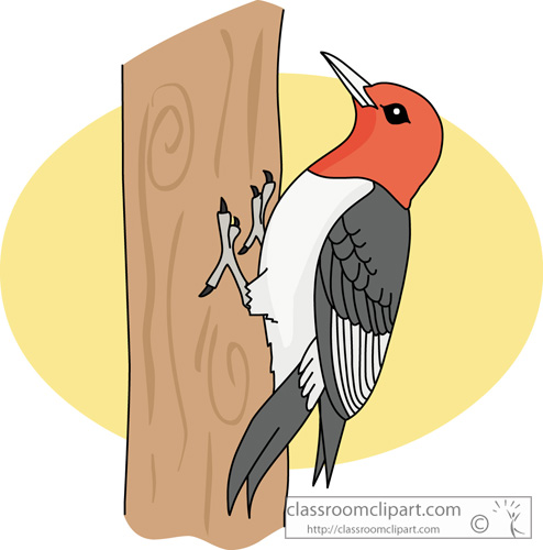 Red Headed Finch clipart #19, Download drawings