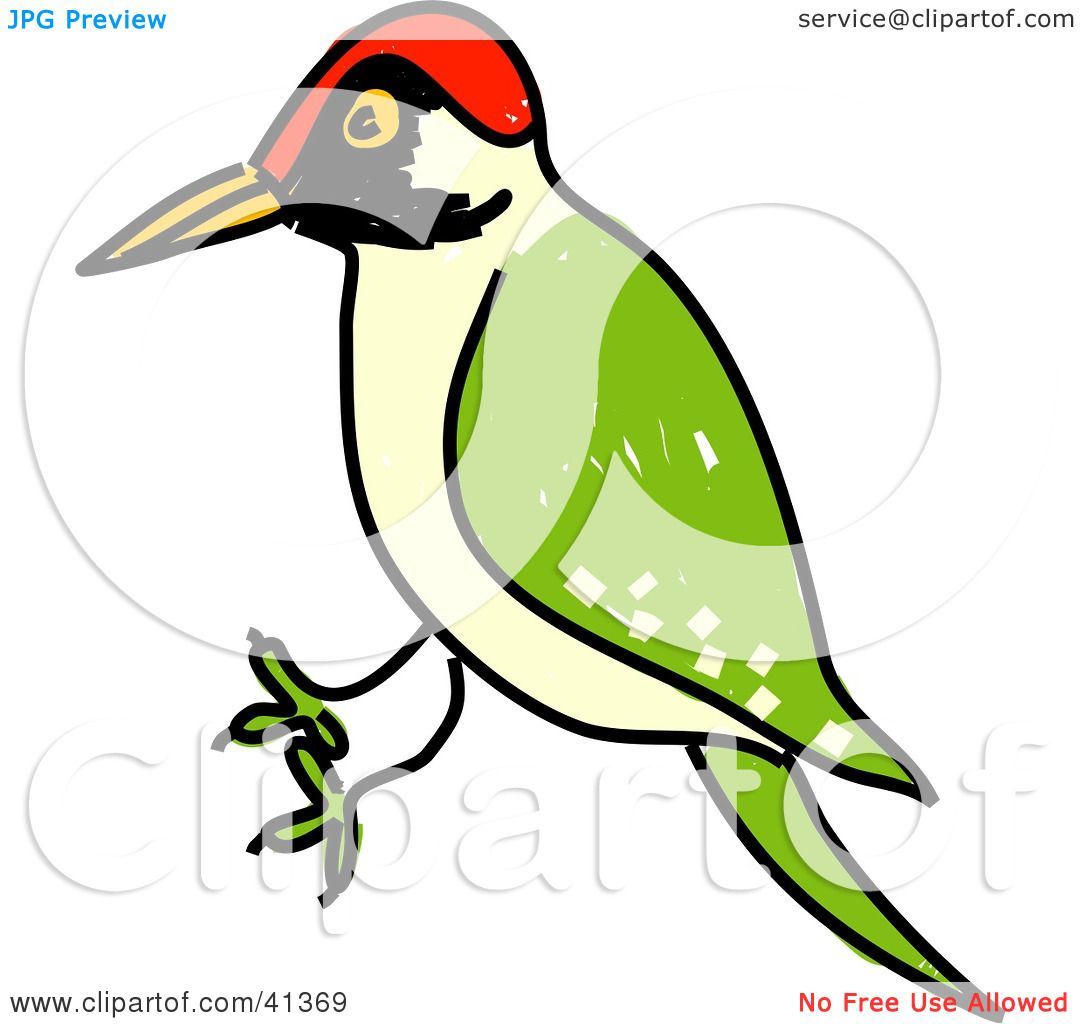 Red Headed Finch clipart #12, Download drawings