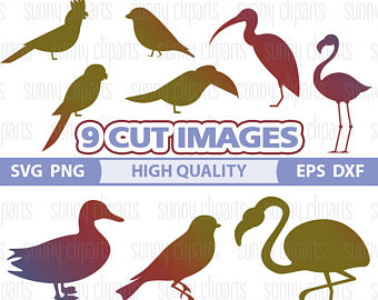 Red Headed Finch svg #15, Download drawings