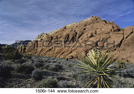 Red Rock Canyon clipart #13, Download drawings