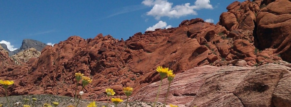 Red Rock Canyon svg #10, Download drawings