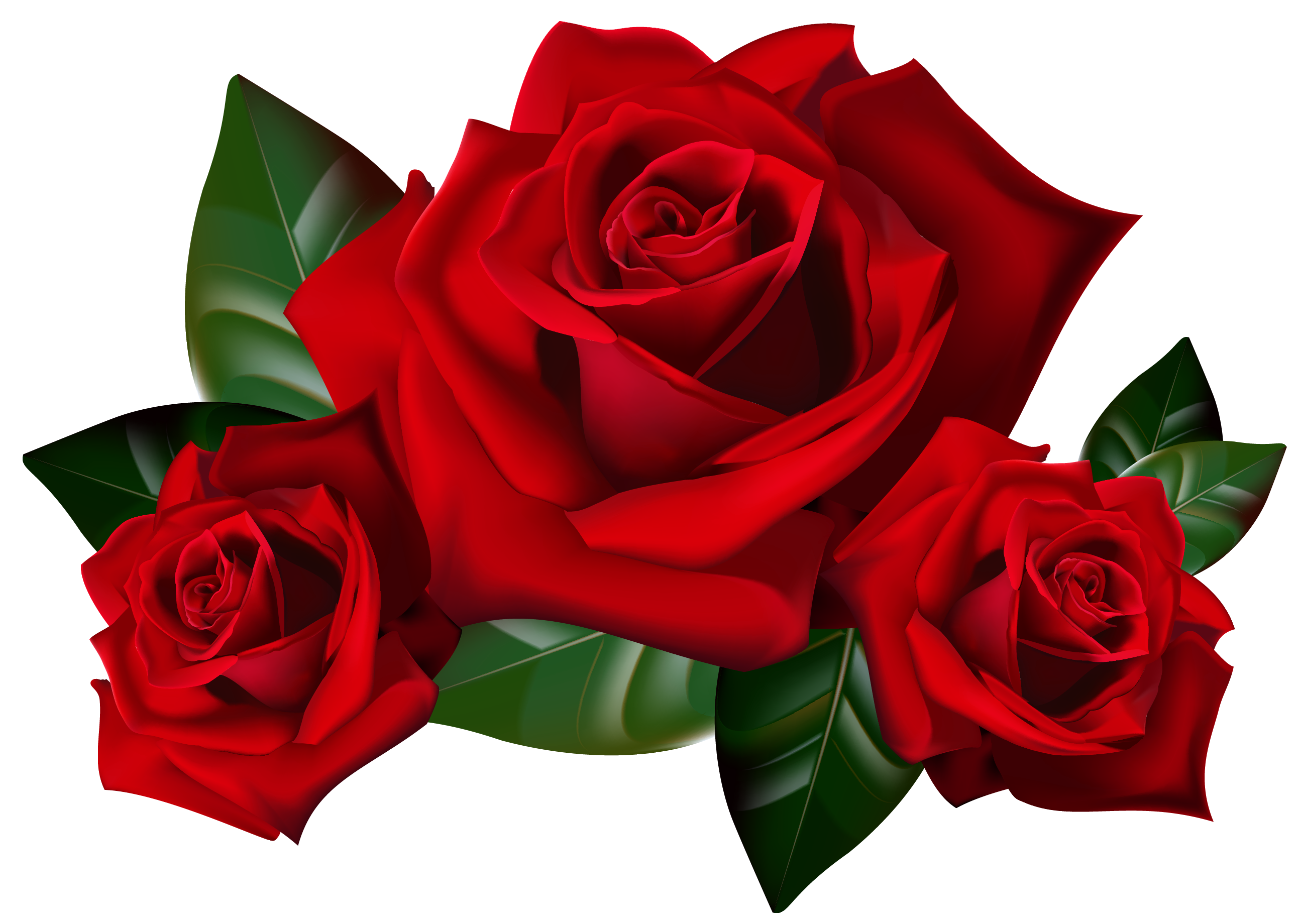 Red Rose clipart #5, Download drawings