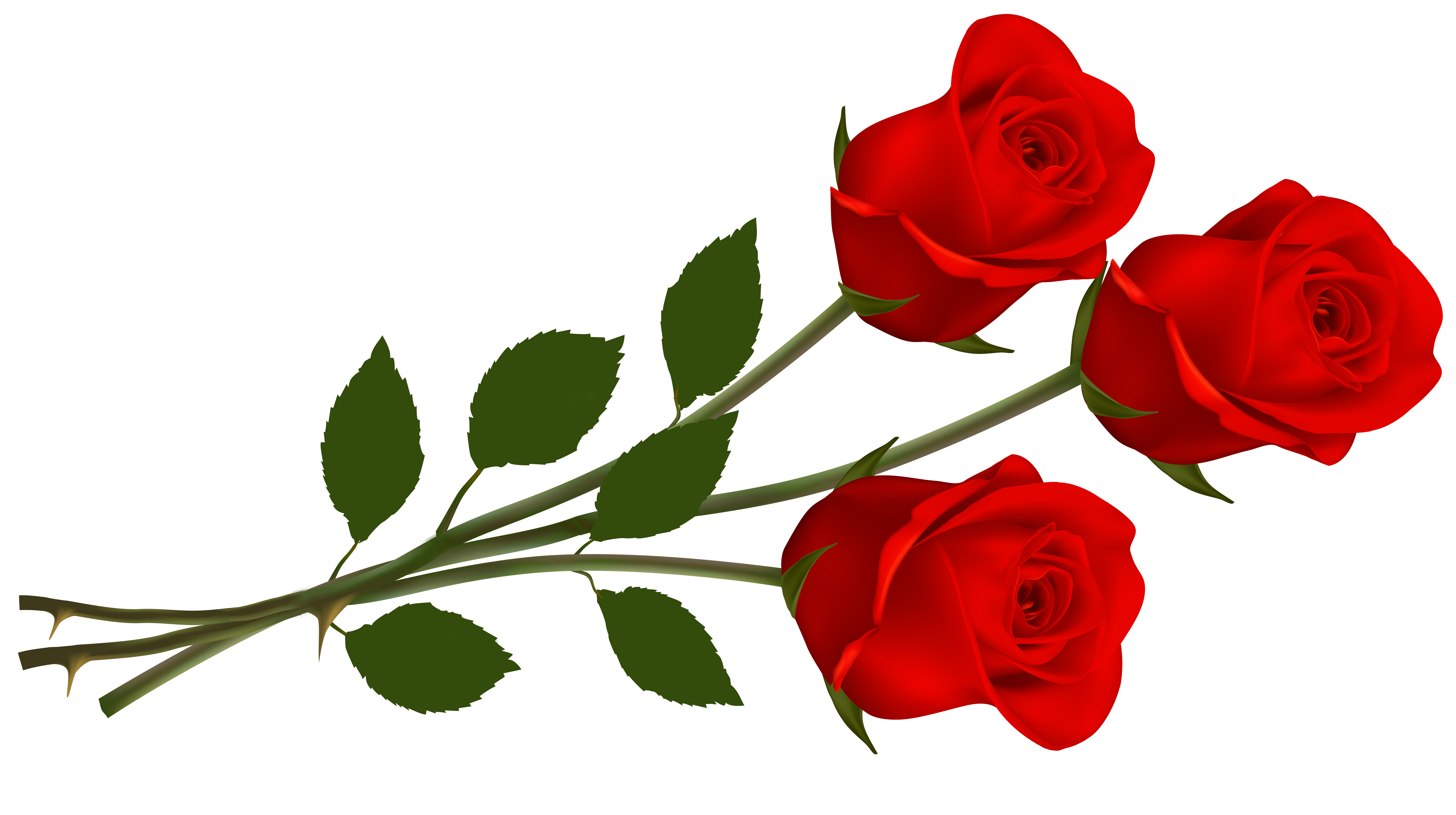 Red Rose clipart #2, Download drawings