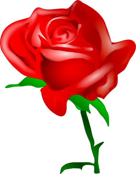 Red Rose clipart #13, Download drawings