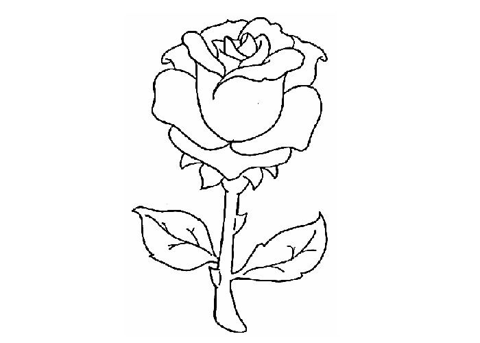Red Rose coloring, Download Red Rose coloring for free 2019