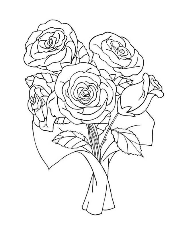 red rose coloring download red rose coloring. Black Bedroom Furniture Sets. Home Design Ideas