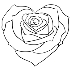 White Rose coloring #19, Download drawings