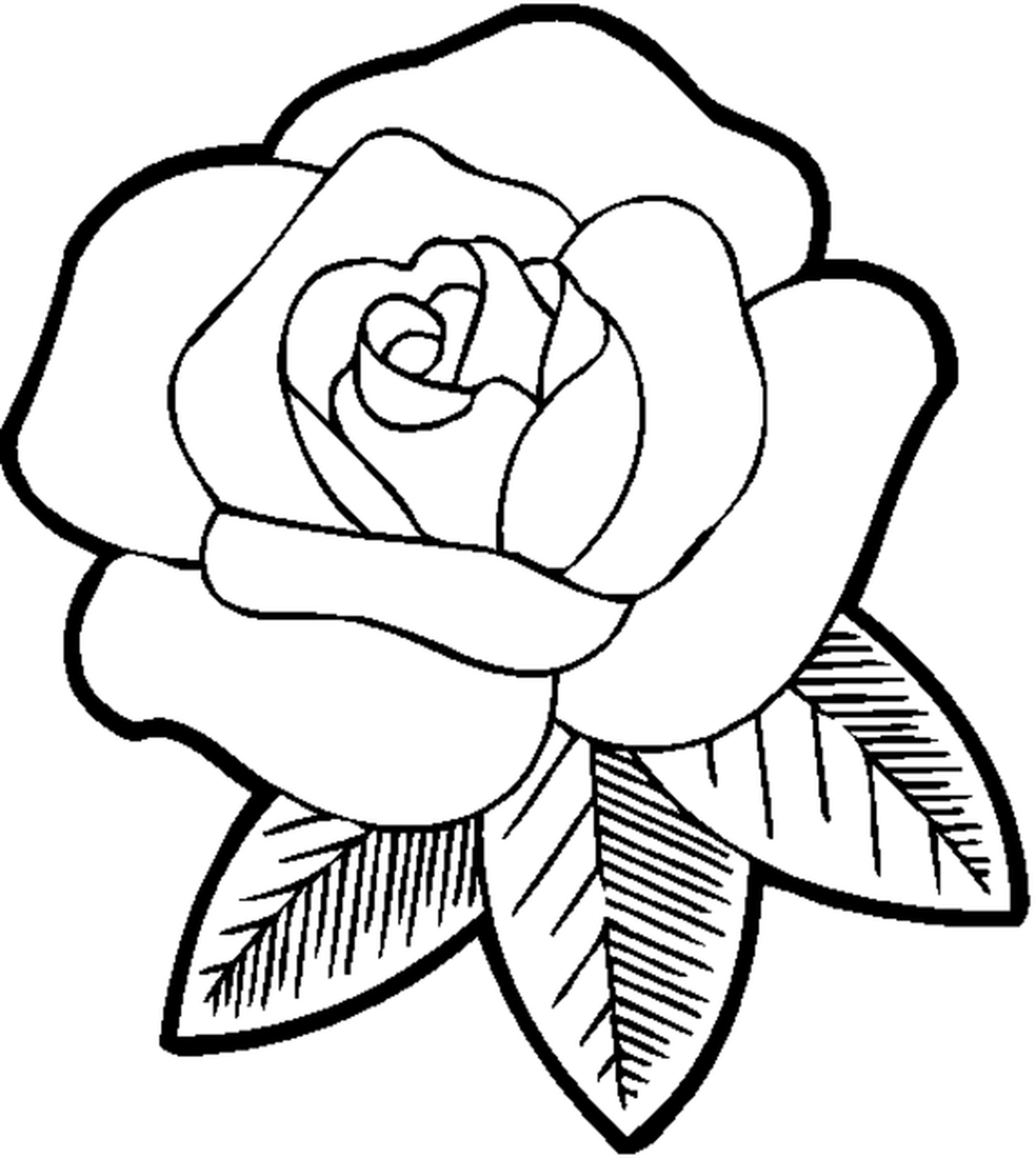 Red Rose coloring #20, Download drawings