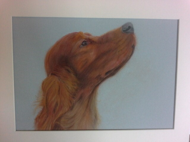 Red Setter svg #12, Download drawings